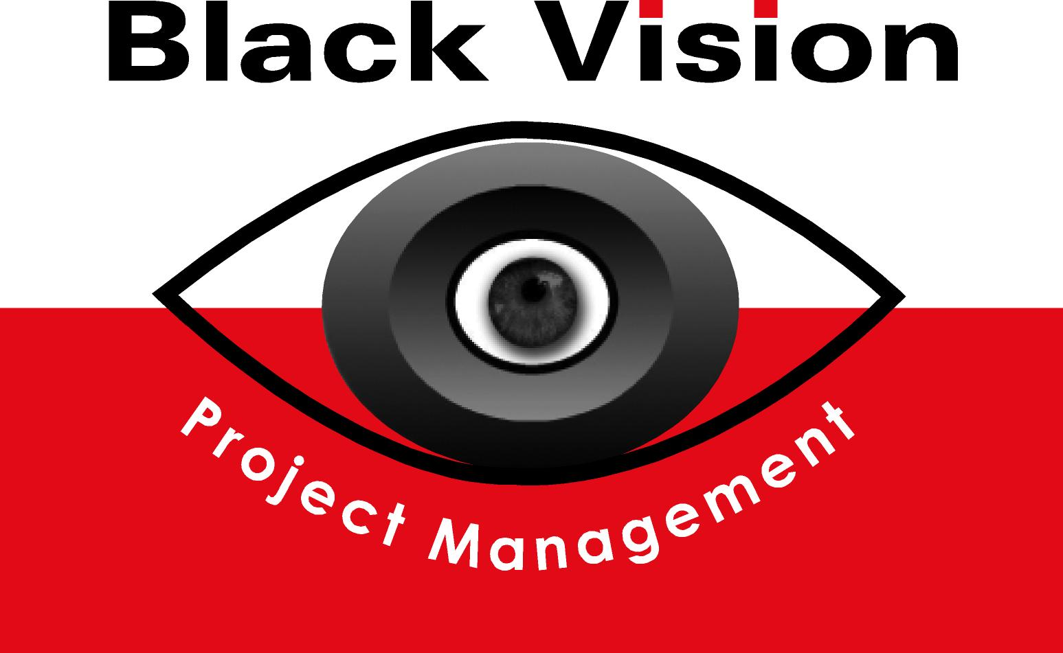 Black Vision Project Management CC