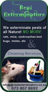 Real Exterminators Pest Controllers and Cleaners